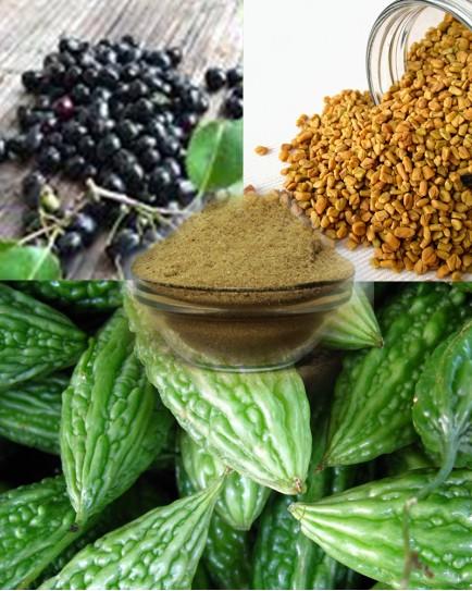 Methi, Jamun. Karela powder (Diabetic Care) - 200 gm.